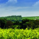 New grant scheme targets AONBs and National Parks