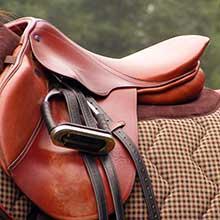 Hobbs Parker Horse and Saddlery Sales